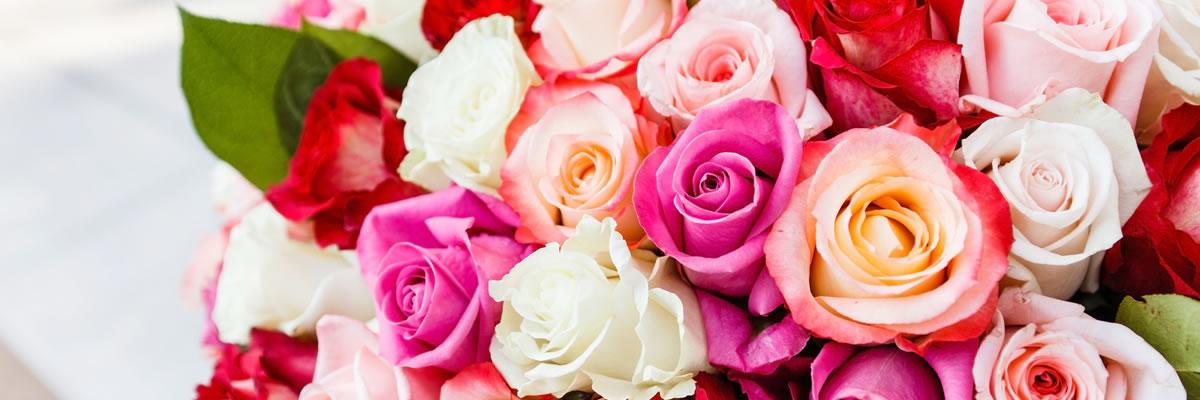 食用薔薇専門店 株式会社バラの学校